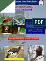 SEMANA 15 - Especies Amenazadas de Fauna Silvestre.