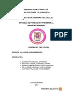 FENÓMENO DEL COLOR.pdf
