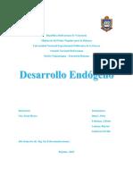 Desarrollo Endogeno ENSAYO