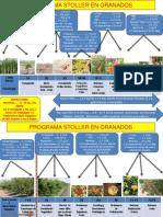 PROGRAMA DE NUTRICION FOLIAR STOLLER EN EL CULTIVO DE GRANADO - PERÚ.