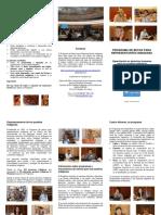 Leaflet2012S.pdf