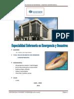 PAE_TERMINADO_SAYAS_16_05_15.doc