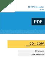 COPA.pptx