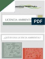 Licencia ambiental