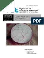 Liquidos_penetrantes+Magnetoscopia_final