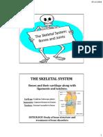 Bones, Joints and Skeletal System