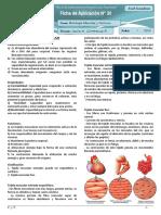 20 Histología muscular y nervioso ficha