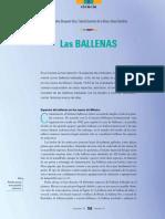 09_70_3_1155_Ballenas_L