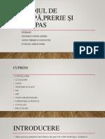 Mediul de stepă,prerie și pampas.pptx