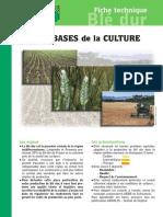 Les_Bases_Culture_Blé_Dur.pdf