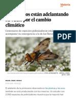 Los insectos están adelantando su vuelo por el cambio climático - Ciencia - EL PAÍS