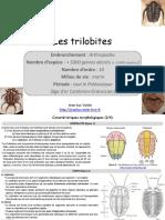 Les Trilobites