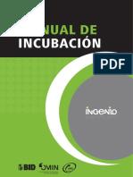 Manual Incubación de Empresas