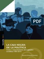 La caja negra de la politica