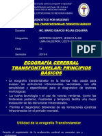 S13_TRANSFONTANELAR (1)