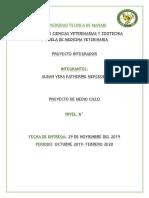 PROYECTO INTEGRADOR TUMORES 6to.docx