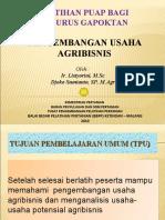 Pgbangan Usaha Agribisnis.ppt 2