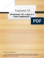 Programa 5S.pptx