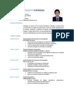 CV-DLY.docx