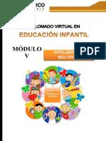 GUÍA DIDÁCTICA 5  -INTELIGENCIAS MÚLTIPLES
