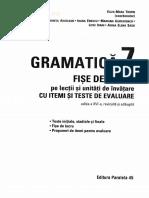 Gramatica - Clasa 7 - Fise de lucru cu iteme si teste de evaluare - Eliza-Mara Trofin