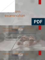 NB examination