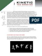 Flying Kicks.pdf