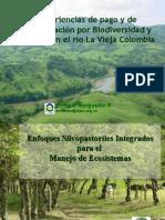 Experiencias de pago y de compensación por Biodiversidad y Carbono