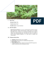 BOOKLET-HERBAL-PLANTS.docx