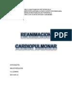 RCP pppppppp