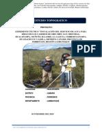 informe-Topografico- NOVIEMBRE
