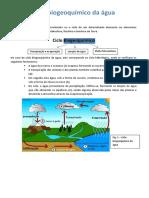 Ciclo biogeoquímico da água