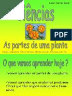 plantas-partes-ppt