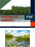 ecosistemas de transiciòn.pptx