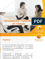 Organización y Metodos de trabajo - Positiva 2009 (51 Diapositivas)