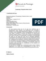 PSI4311-01-Psicopatología-y-Psiquiatría-Niños-y-Adolescentes-Albana-Paganini