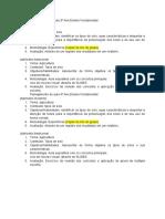 Planejamento de aula 3º Ano Ensino Fundamental