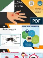 Dengue zika chikungunya
