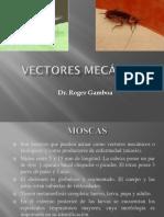 16. Vectores mecanicos - Mosca, Cucarachas