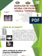 yogurt ciruela-1