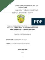 PRACTICA PRE PROFESIONAL III (Autoguardado)