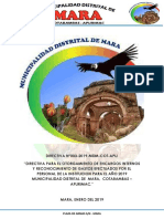 directiva de encargo.pdf