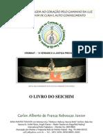 Carlos Junior Seichim Reiki PDF