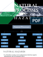 Natural Processes and Hazards PDF Report