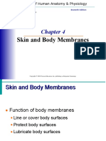 Anatomy-Unit-4-Skin-and-Body-Membranes - Copy.ppt