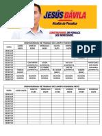 CRONOGRAMA DE TRABAJO DE CAMPO PODEMOS PERÚ