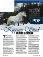 Kippure Stud Talks to Irelands Equestrian