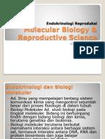 Endokrinologi Reproduksi