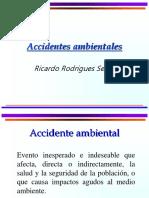 Conceptos Basicos sobre accidentes ambientales.ppt