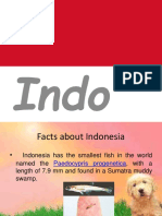 indonesiapoliticalsystem-150312075227-conversion-gate01